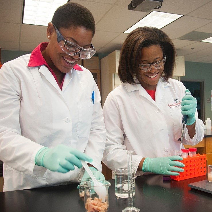 Students working in food science lab
